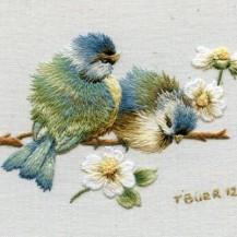 blue birds and diasies