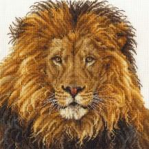 BK1668_Lions_Pride_preview__07906.1530392973
