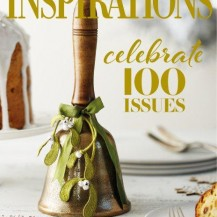 INS 100_Cover